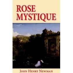 Rose mystique