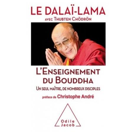 L'enseignement du Bouddha, un seul maître, de nombreux disciples