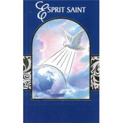 Lot de 12 Cartes doubles Biblio St Esprit
