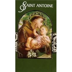 Lot de 12 Cartes doubles Biblio St Antoine