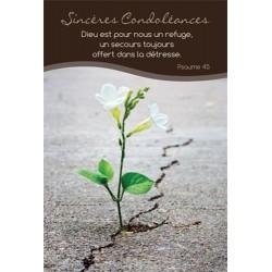 Lot de 20 - Carte simple Sincères condoléances