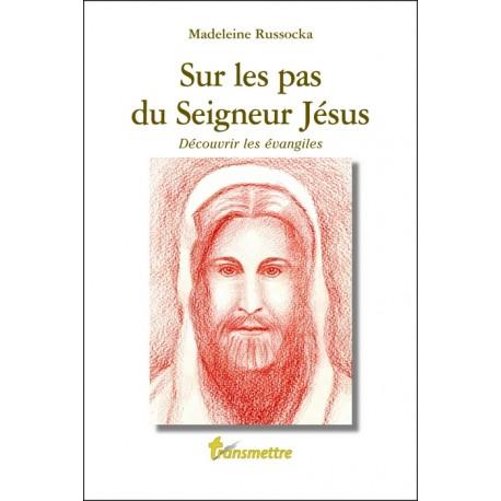 Sur les pas du Seigneur Jésus, découvrir les évangiles