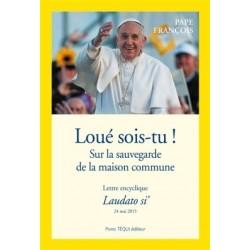 Lettre encyclique Laudato si' - Pack 10 exemplaires